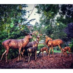 Bronze Deer Herd of Six Sculpture Set